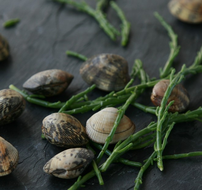 Cockles with samphire.