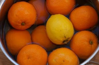 seville oranges, sweet oanges and lemons