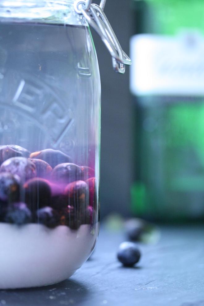 macerating sloes in Gordons Gin